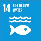 SDG 14 logo