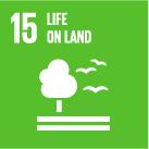 SDG 15 logo